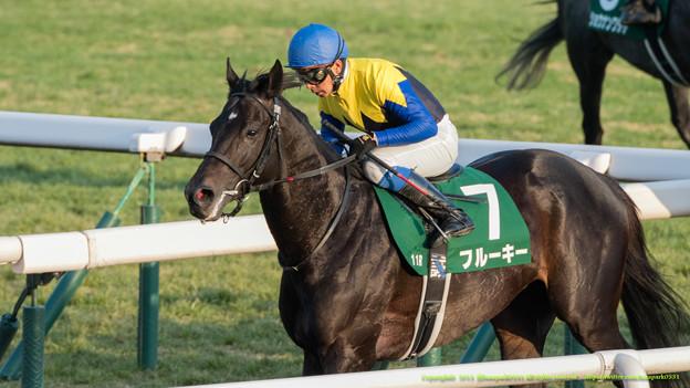東京新聞杯 2015の出走予定馬フルーキーら分析です