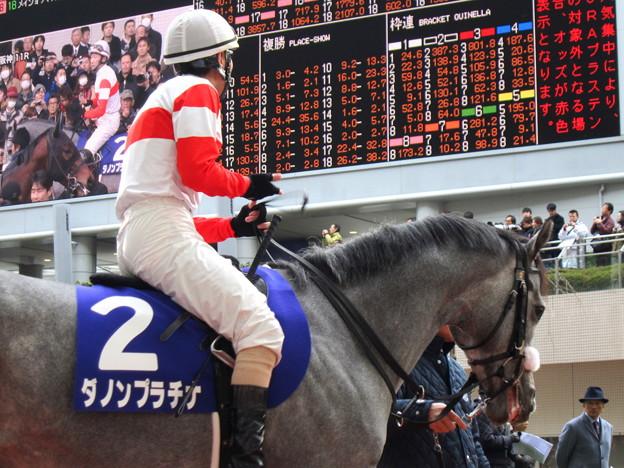スプリングステークス 2015の出走予定馬ダノンプラチナら