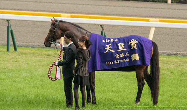 産経大阪杯 2015の予想スピルバーグの気になる点とは