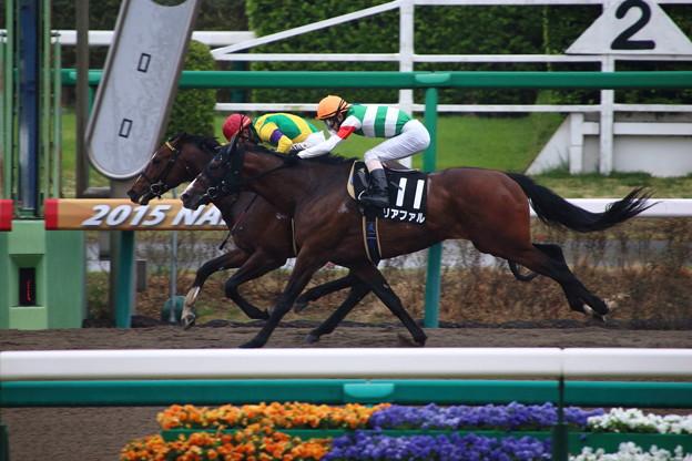 兵庫チャンピオンシップ2015の予想リアファルの巻き返しに期待
