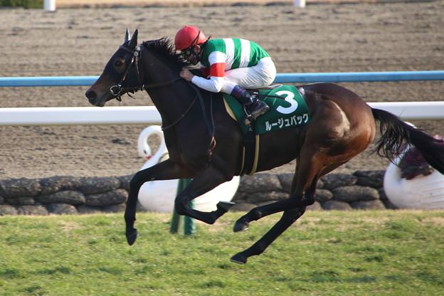 オークス 2015の出走予定馬ルージュバックは本当に強いのか