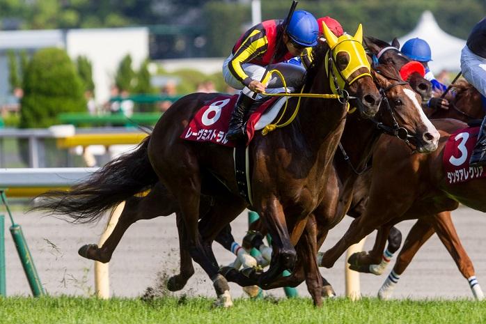 日本ダービー 2015の出走予定馬レーヴミストラルの一発あるのか