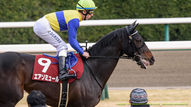 鳴尾記念 2015の出走予定馬エアソミュールの連覇なるか