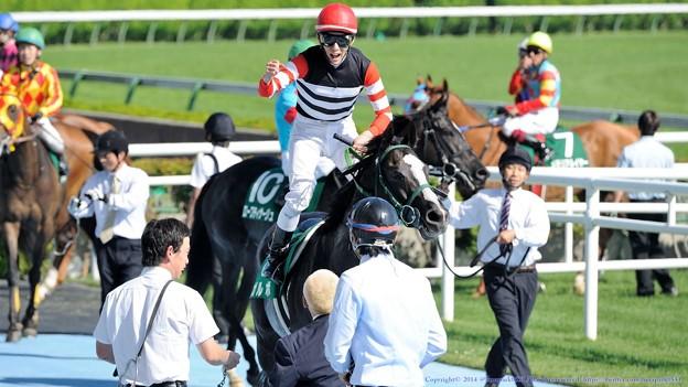 函館スプリントステークス2015の予想 距離短縮馬が狙い目