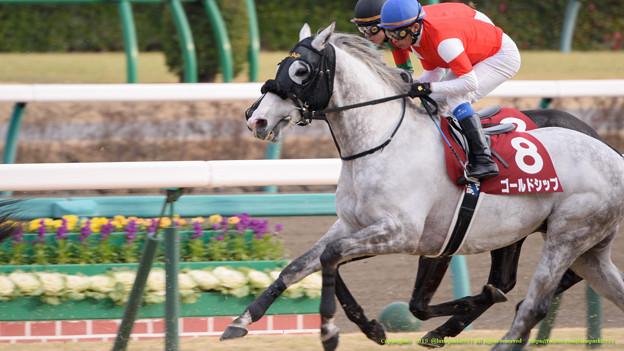 宝塚記念2015 予想で5頭の牝馬をどう扱うか