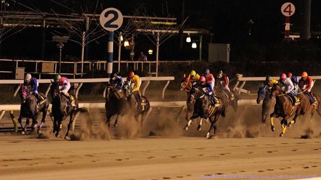 ジャパンダートダービー2015】出走予定馬の分析など