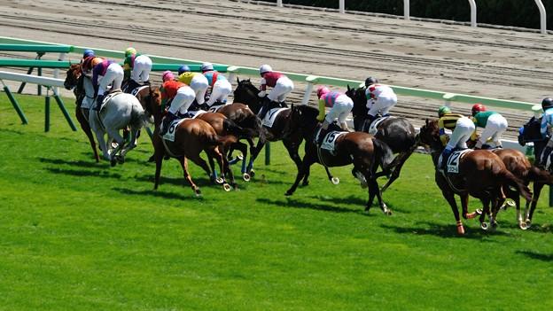 函館記念2015出走予定馬エアソミュールの分析など