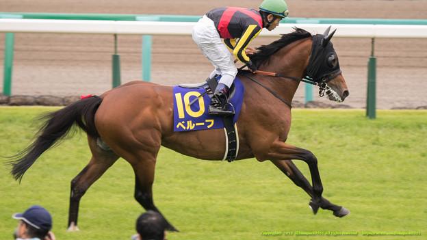 小倉記念2015の出走予定馬と1週前予想です