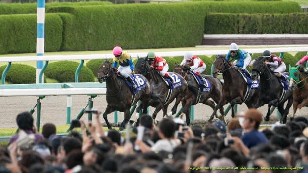 京都大賞典2015の出走予定馬と1週前展望です