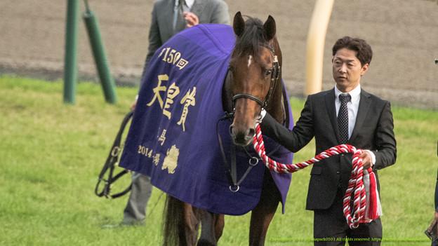 天皇賞(秋)2015の予想考察は枠順が確定!ラブリーデイは