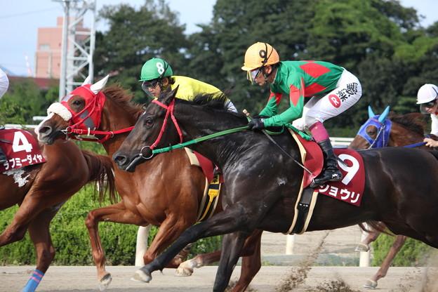 兵庫ジュニアグランプリ2015予想は園田ダート1400mのJpnII戦