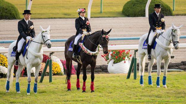 エリザベス女王杯2015は出走予定馬と1週前展望です