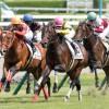 【京都2歳ステークス2015予想参考】戦績が汚れている馬を買う