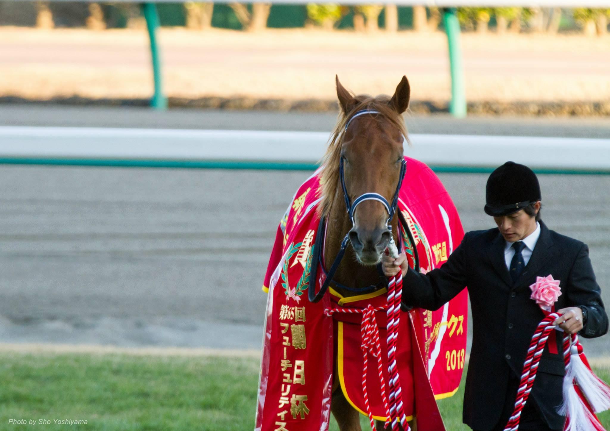 【朝日杯フューチュリティステークス2015予想】2週連続の田村厩舎のVある!?