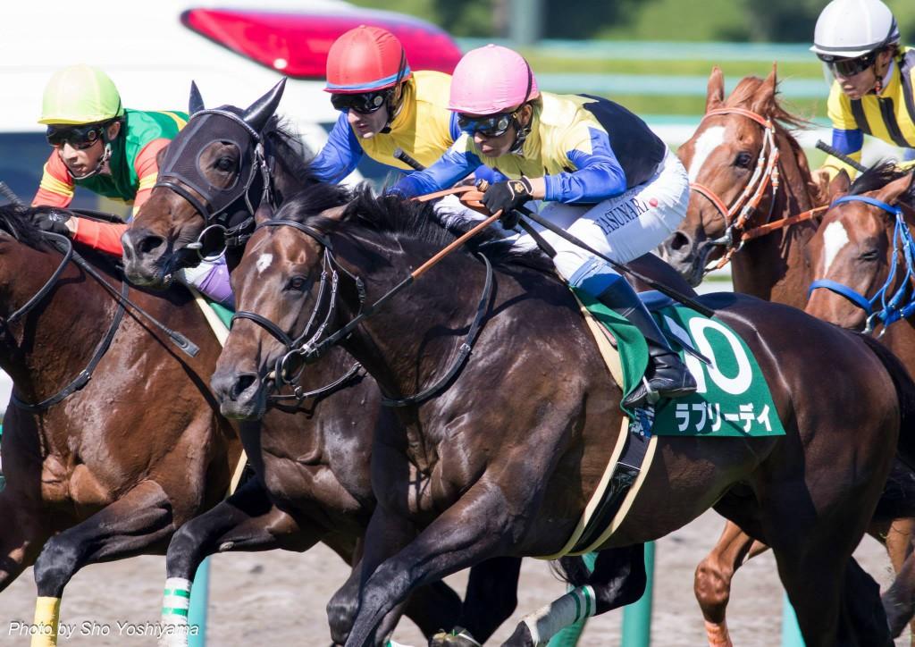 【大阪杯2016予想考察】スローペースで有利な馬は?