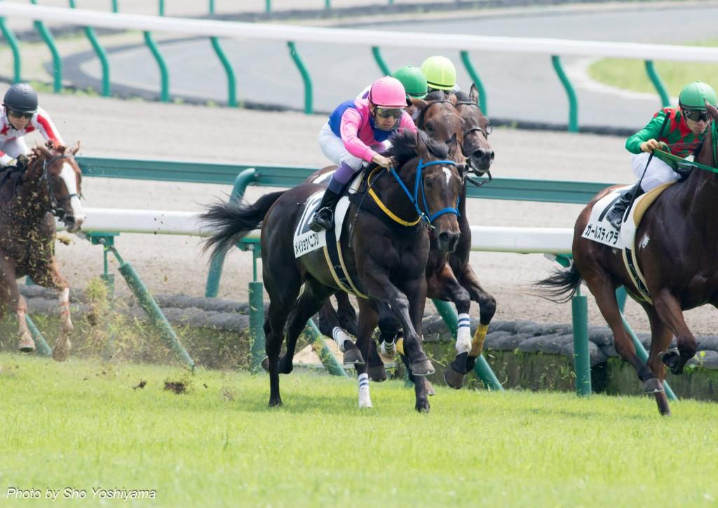 【中日新聞杯2016予想】ヤマニンボワラクテの重賞初制覇に期待