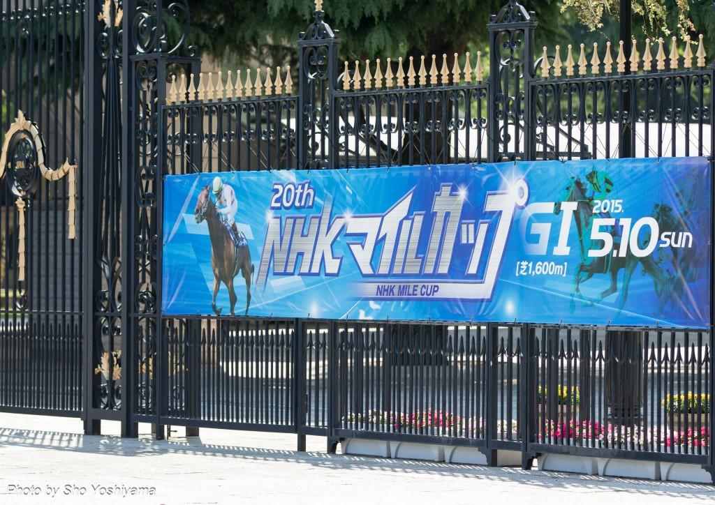 (【NHKマイルカップ2016予想考察】メジャーエンブレムらが出走予定)
