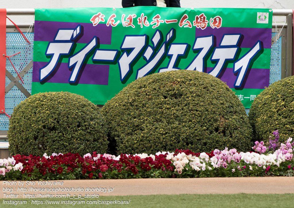 【セントライト記念2016予想考察】ディーマジェスティらが出走予定