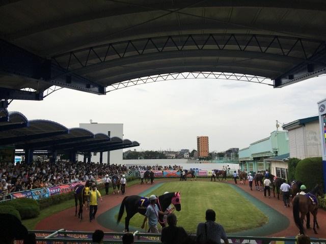 【埼玉新聞栄冠賞2016予想】浦和1900mのSIII戦