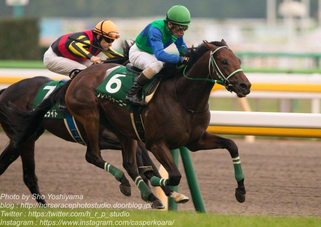 競馬 サウジアラビア